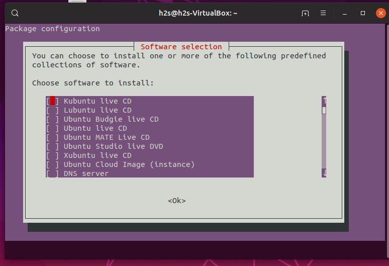 Choose software to install using Tasksel on Ubuntu Linux