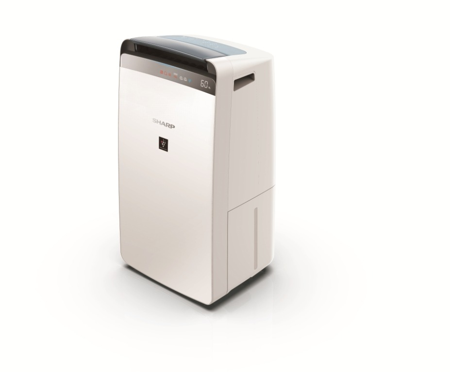 DW-J20F Air Purifier cum Dehumidifier