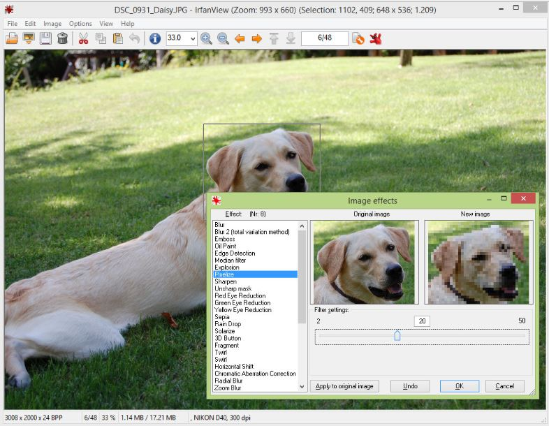 IrfanView-photo-viewer-software
