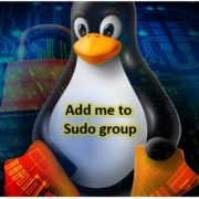 Add user to sudo group for root administrative rights