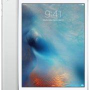 Apple iPad mini (WIFI + cellular)