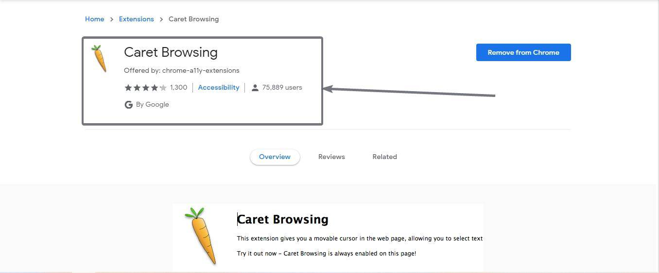 Caret browsing on Chrome 1