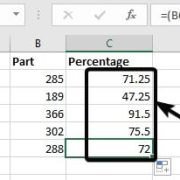 Percentage on Excel 8