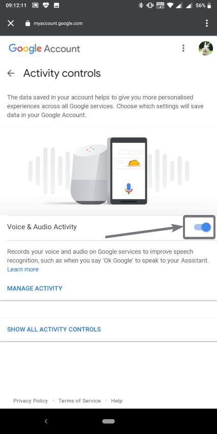 Disable Voice and audio activity