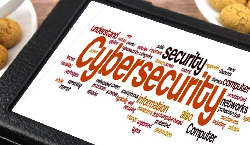 5 Different types of job areas for Cyber security professionals in India