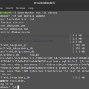 RUn docker image on Linux Mint 19