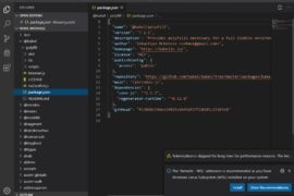 Run Visual Studio code portable on WIndows and Linux