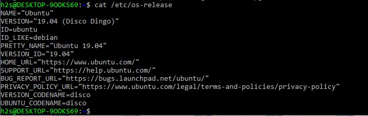 Ubuntu 19.04 upgrade