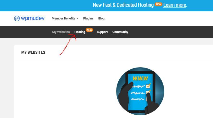 wpmudev hosting