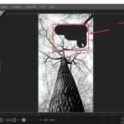 Make images transparent with Photoscape X 50