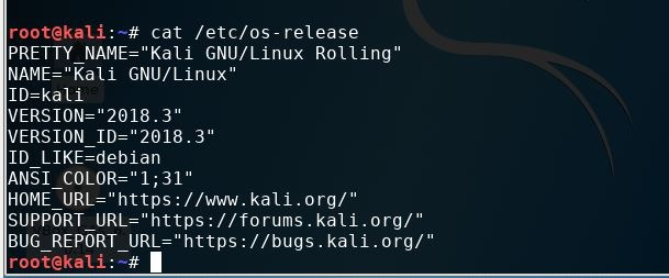 Check Kali Linux system versions
