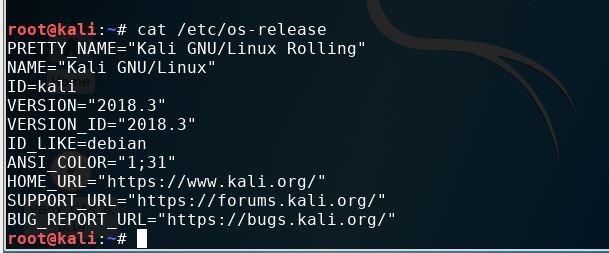 Check Kali Linux system versions