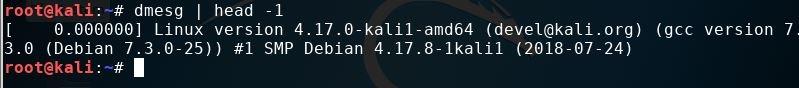 Kali system version checking