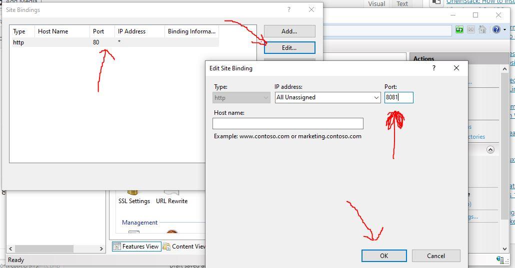Custom port on IIS web server