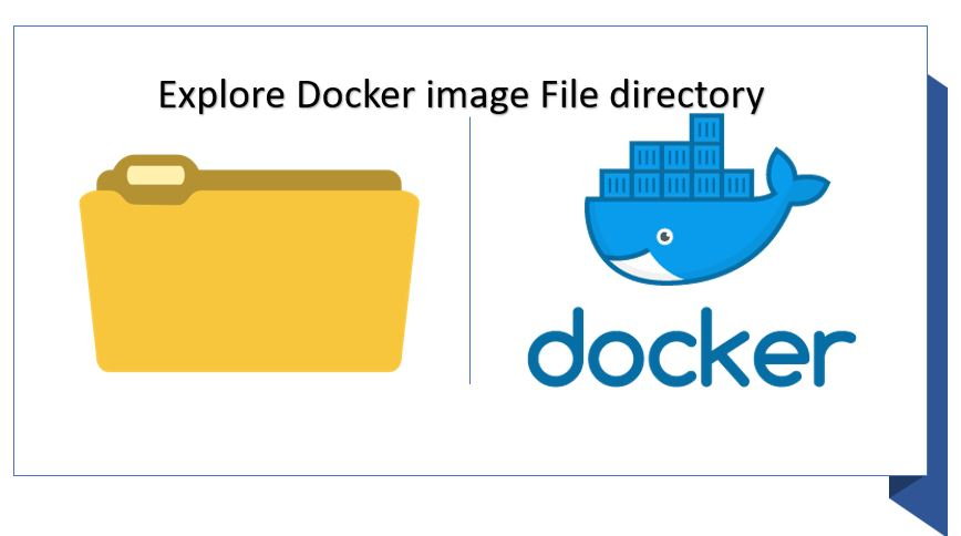 How to explore Docker container's Linux apps file system