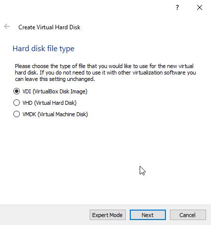 Virtual storage type
