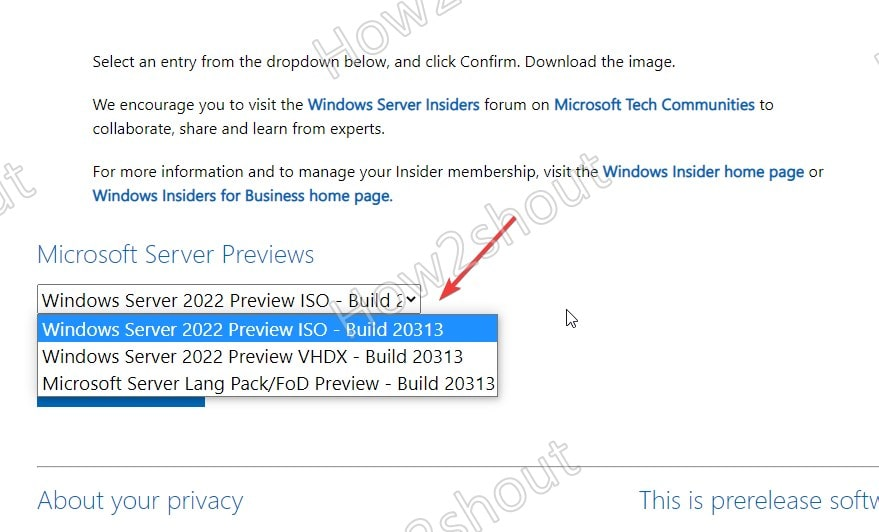 Select Windows Server 2022 Preview ISO buil