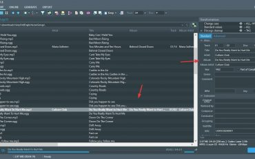 Manually Edit meta infromation on Tagscanner min