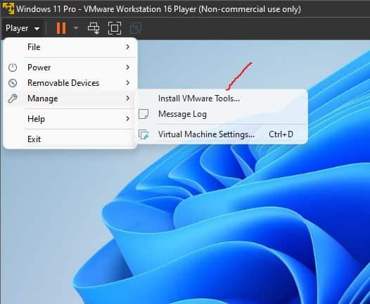 Access Vmware Tools option for Windows 11