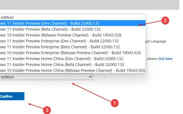 Windows 11 Insider PReview version