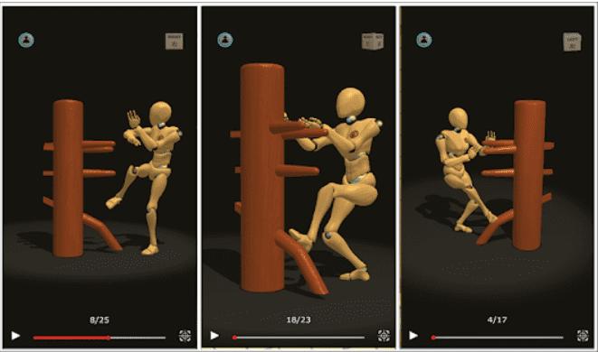 Wing Chun Trainer best MMA App Andriod