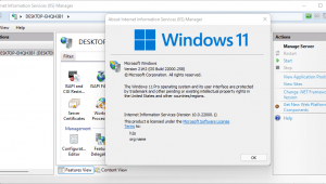 Command to install IIS manager Windows 11