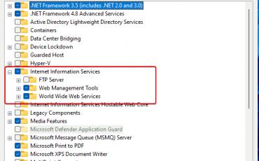 Enable IIS on Windows 11