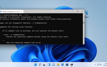 Powershell enable Windows 11 WSL