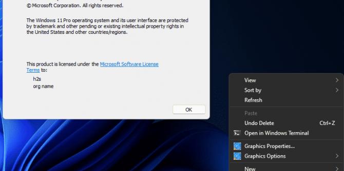 Screenshot of Windows 10 old context menu on Windows 11
